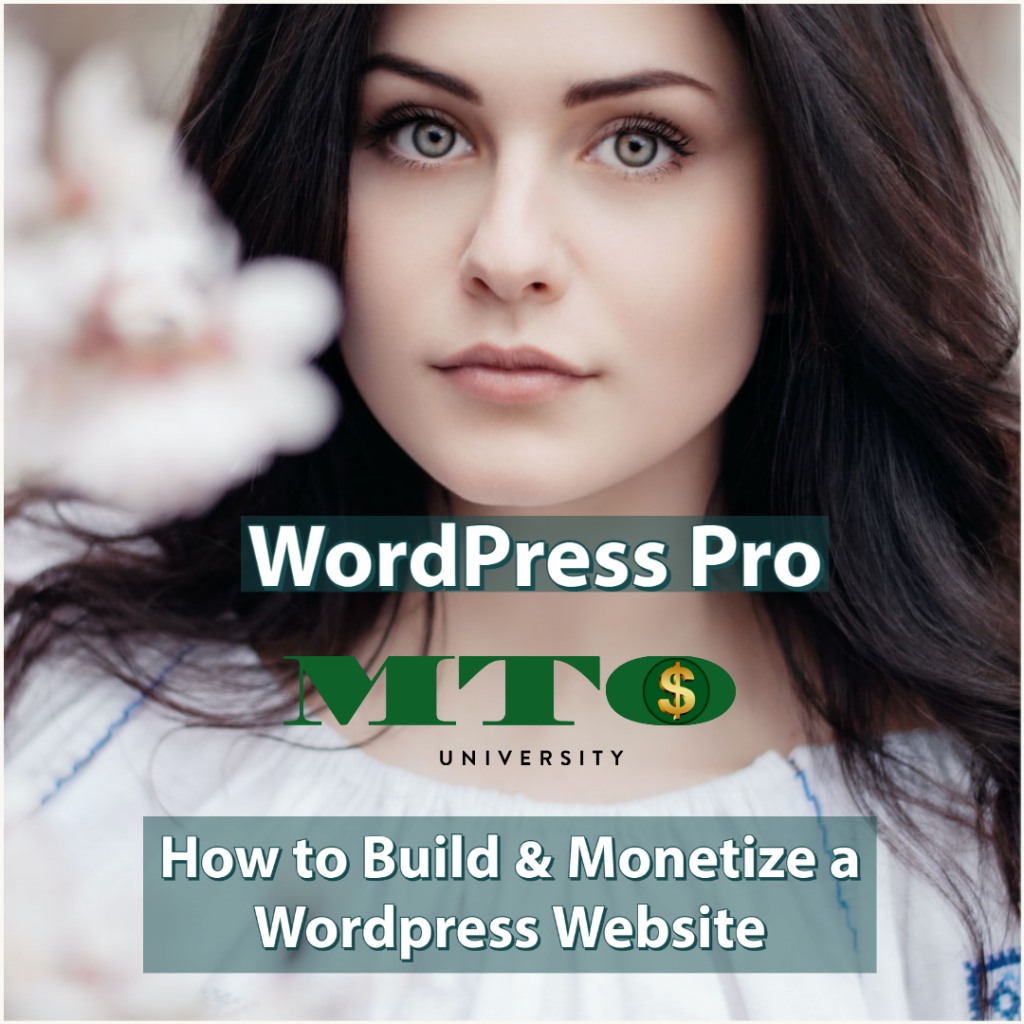 Build and Monetize Your Wordpress Website